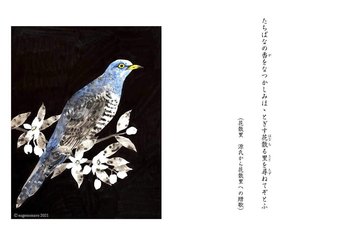 ゆめまぼろしcolor_ページ_10